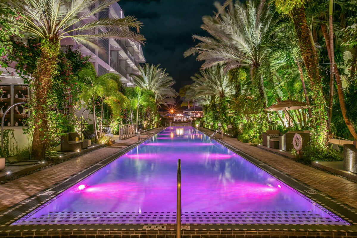The National Hotel Infinity Pool Purple at Night
